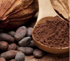 Какао порошок: польза для здоровья